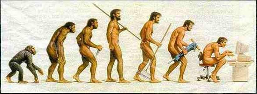 evolution26.jpg