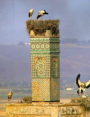 minaretnormalchellah.jpg
