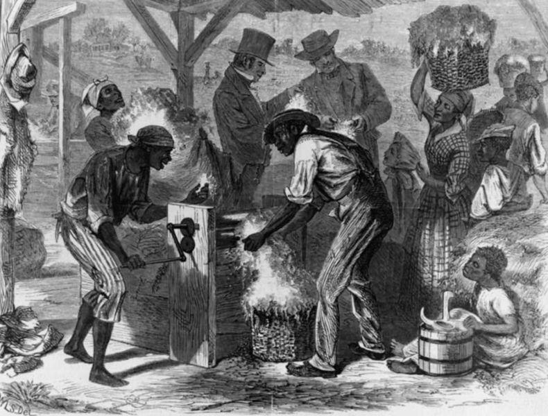 esclavescoton.jpg
