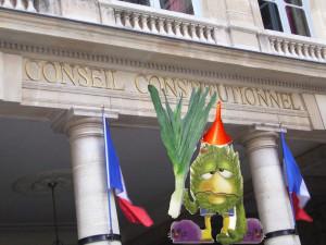 C'est le quatre cent seizième fafiot! dans Présidentielles 2012 Conseil_constitutionnel_présidentielles2012-300x225